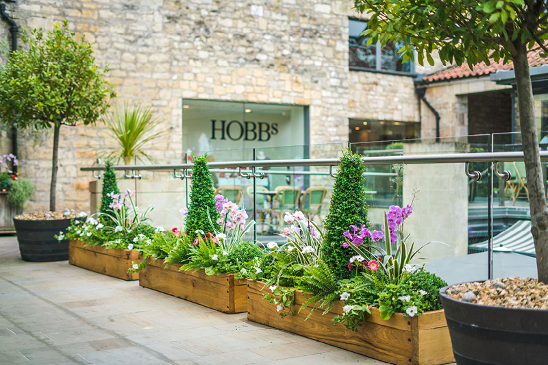 Milsom Place Hobbs